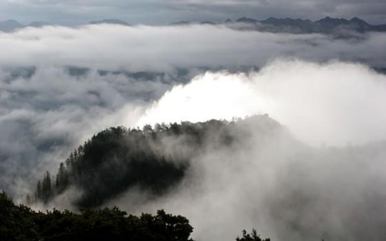 瓦西扎噶的晨雾