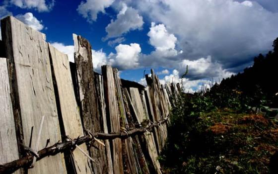 鲁朗牧场的篱笆