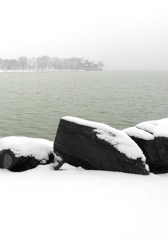 颐和园春雪,2010年